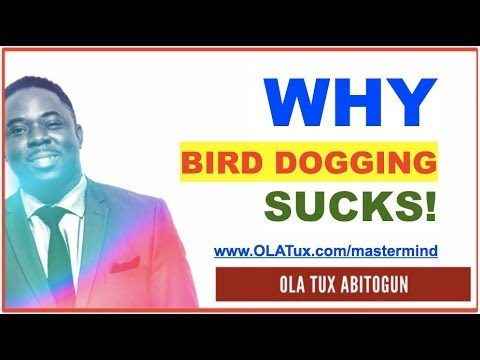 Wholesale Real Estate Truth – Why Bird Dogging Real Estate Doesn't Work