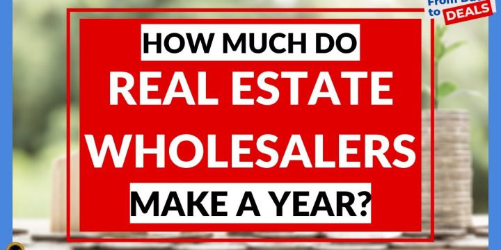 HOW MUCH Do Real Estate Wholesalers MAKE A YEAR?